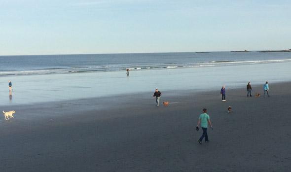 People on Nantasket Beach in Hull