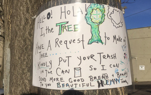 Tree asks people to stop putting trash around it at the base of  Mission Hill