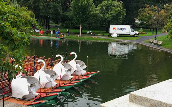 Swan Boats on their way out for the season