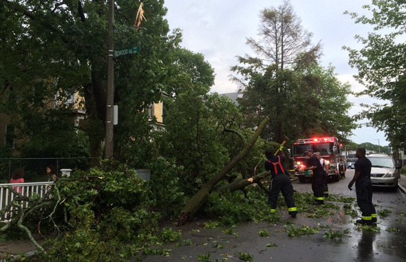 Firefighters deal with downed tree limb on Custer Street, Jamaica Plain