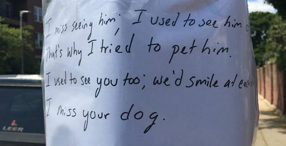 Flier on South Huntington: Guy misses dog and woman who owns him