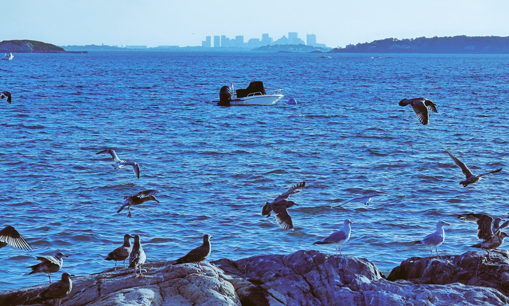 Boston as seen from the shore in Marblehead