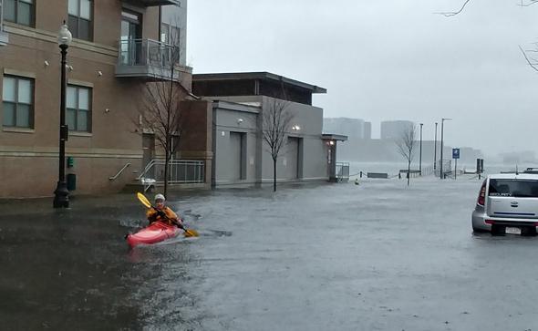Man kayaking down Lewis Street in East Boston