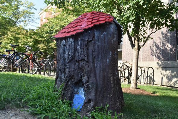 Winnie the Pooh's house in Harvard Square