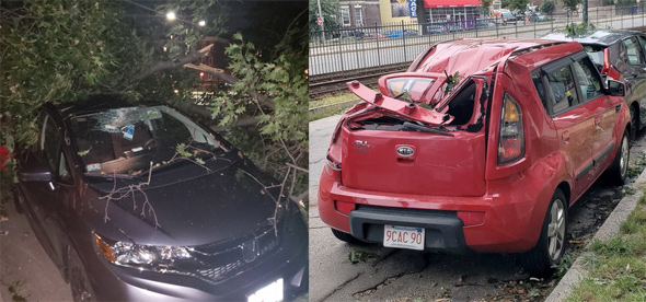 Cars destroyed by tree in Allston