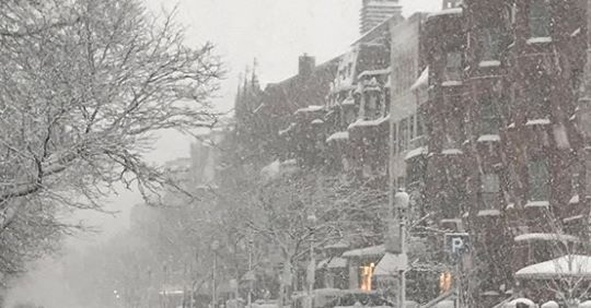Newbury Street in the snow