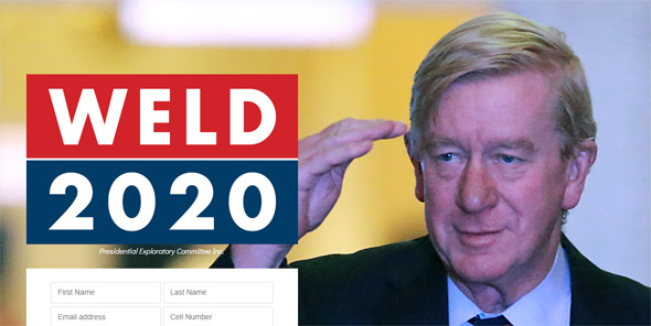 Bill Weld, from his Web site
