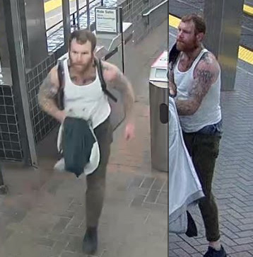 Alleged Green Line attacker
