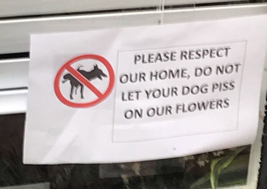 A sign that asks dog owners to keep their pets from pissing in somebody's Beacon Hill yard