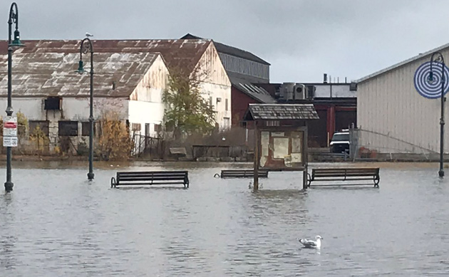 King Tide at Tenean Beach in Dorchester