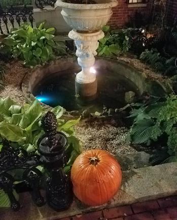 Tossed pumpkin