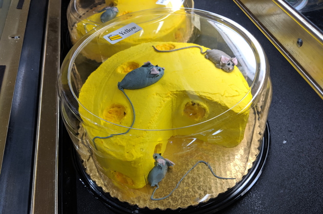 Mouse cakes