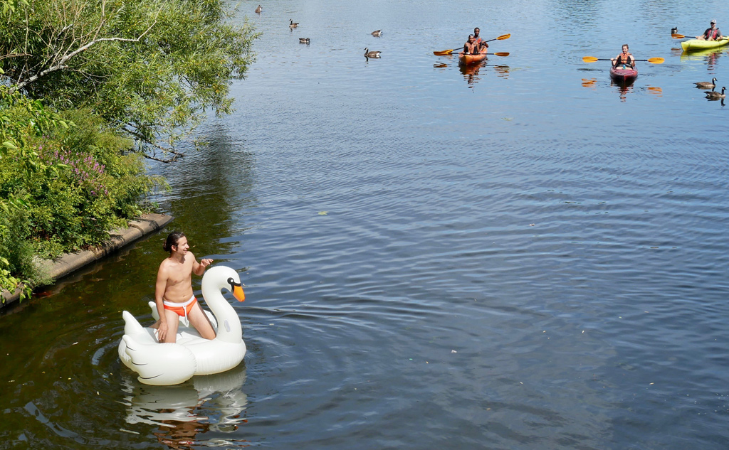 Man in a swan tube in the Charles River