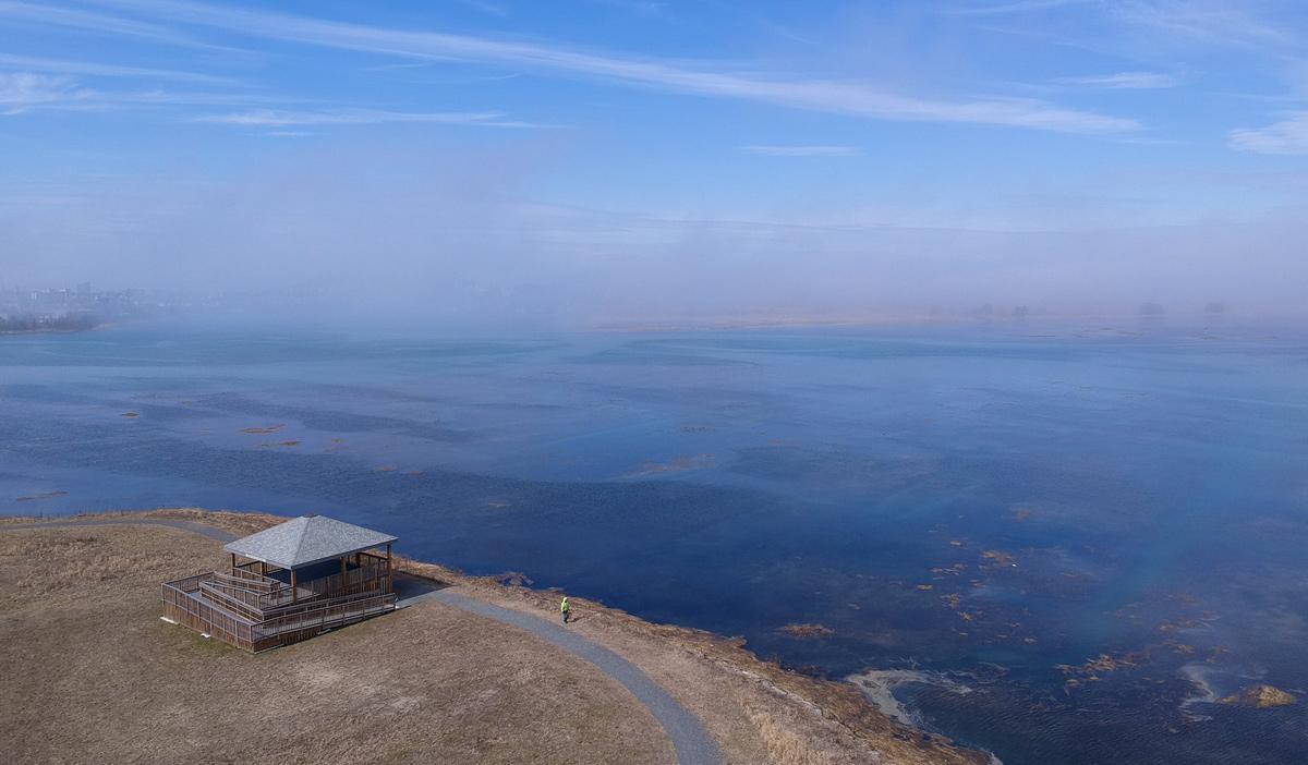 Fog seen from Belle Isle Marsh