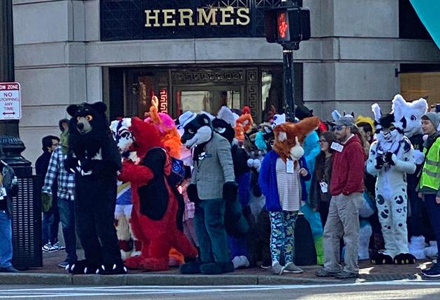 Furries outside Hermes on Boylston Street