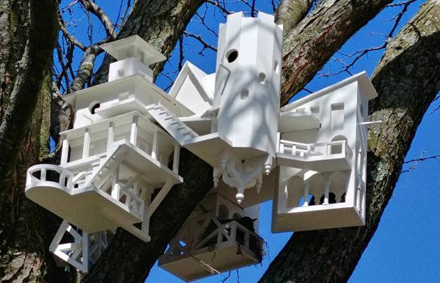 Fancy birdhouse in Somerville