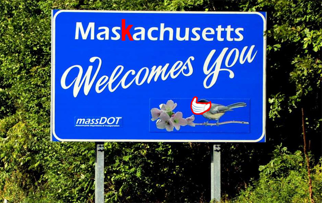 Welcome to Maskachusetts