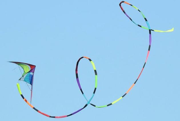 Kite above Millennium Park in West Roxbury
