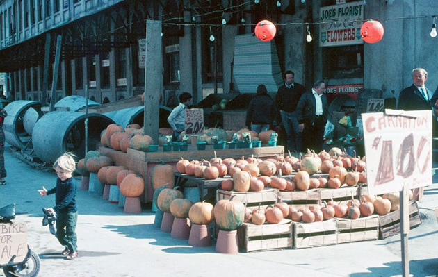 Kid and pumpkins in old Boston