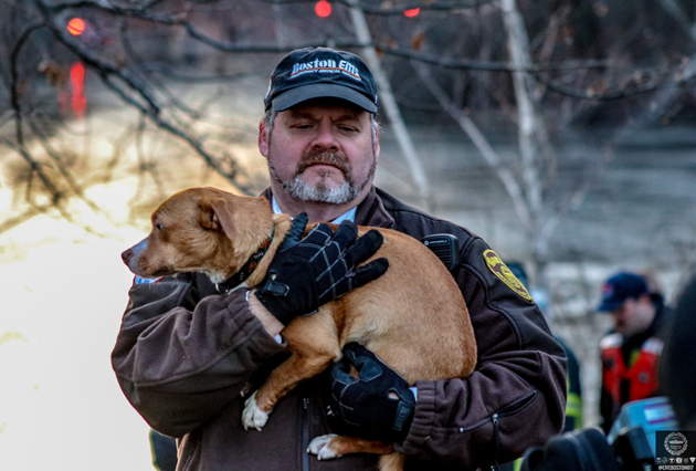 Boston EMT with rescued dog