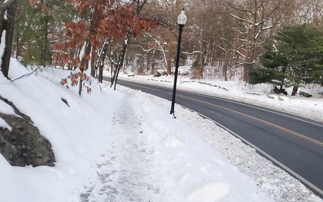 Sidewalk vs. road in Franklin Park
