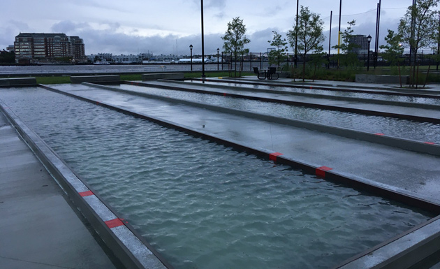 Flooded bocce courts in the North End