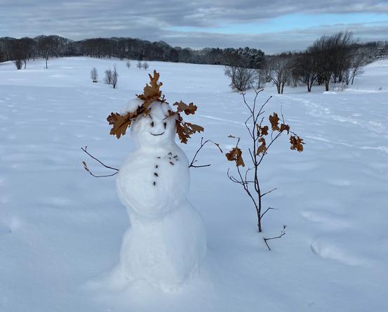 Snowwoman in Franklin Park