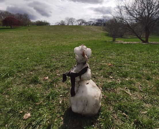 Melting snowman at Arnold Arboretum
