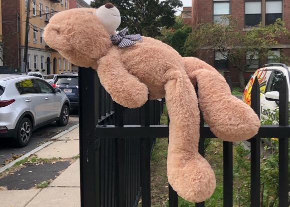 Teddy bear impaled on a fence