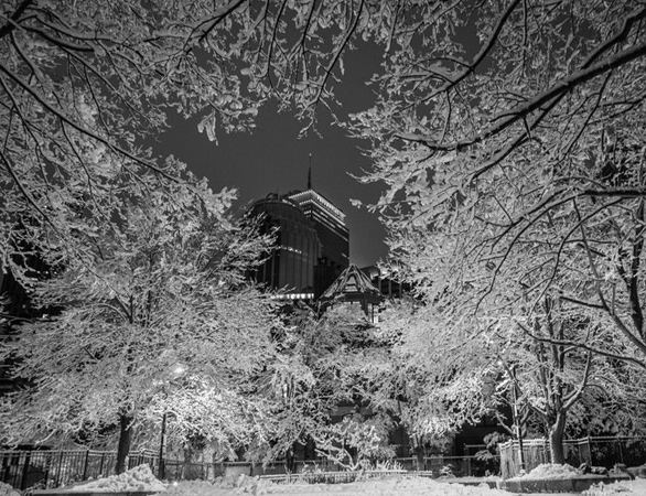 Prudential building through snow-covered trees