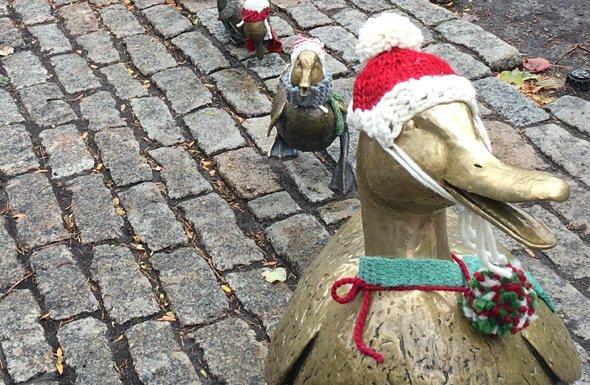 Mrs. Mallard in her Christmas finest in the Public Garden