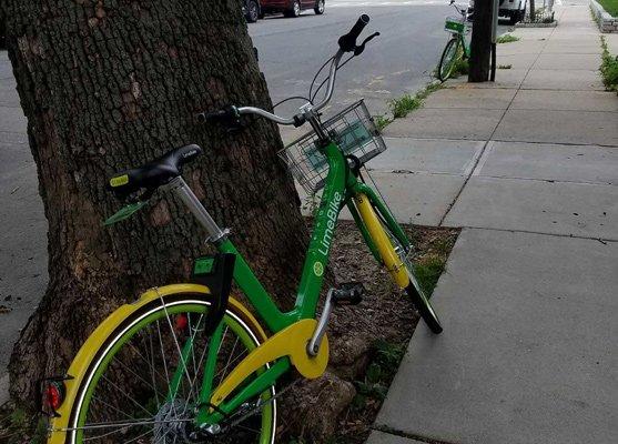 Two rental bikes that don't belong in South Boston
