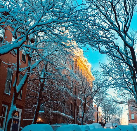 Snowy morning in Charlestown