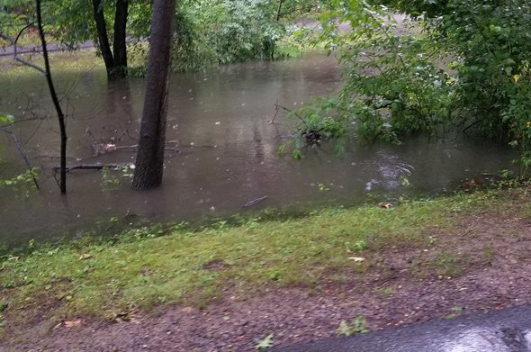 Flooding Muddy River