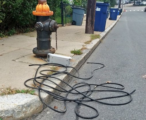 Tangled cable in Roslindale