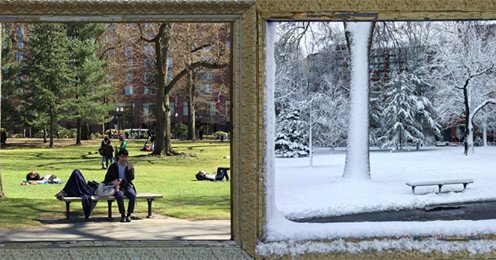 Public Garden today and a month ago in the snow