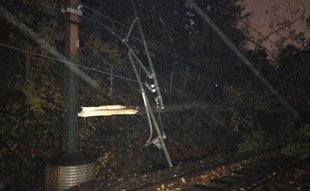 Downed tree in Chestnut Hill on the Green Line tracks