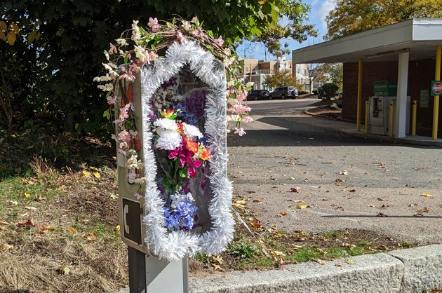 Old phone box now with flowers in Roslindale
