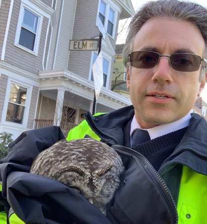 Owl and MBTA worker
