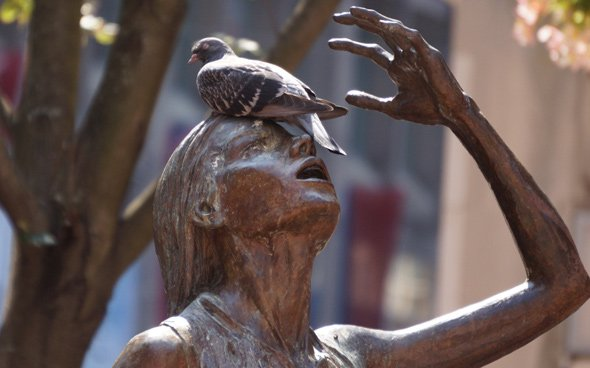 Pigeon on Irish Famine Memorial woman in Downtown Crossing