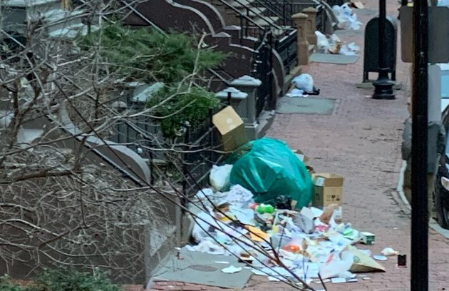 Garbage along Worcester Square in the South End