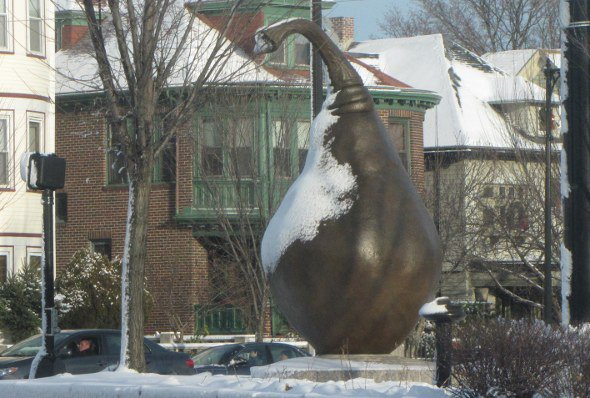 Snow-covered Clapp Pear in Dorchester