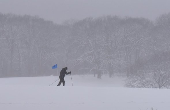 Cross-country skier at Franklin Park golf course