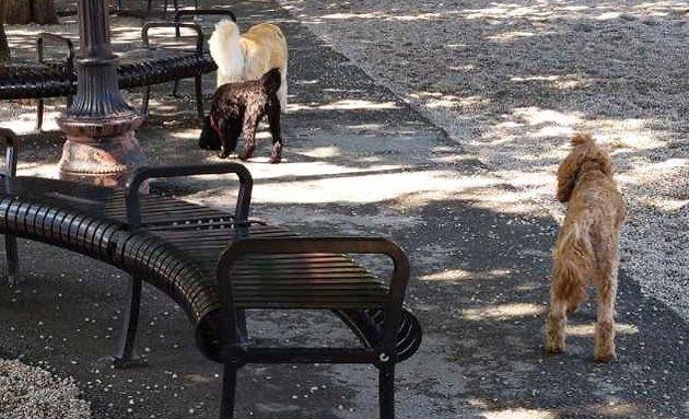 Bad bench, bad