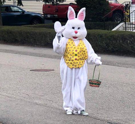 Easter Bunny in Dedham
