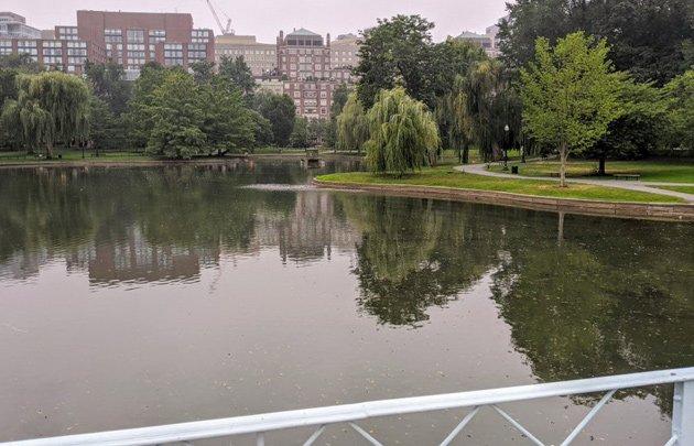 New water in Public Garden Lagoon