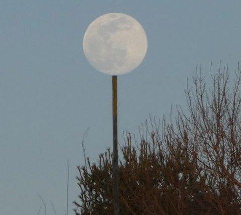 Full moon over Millennium Park