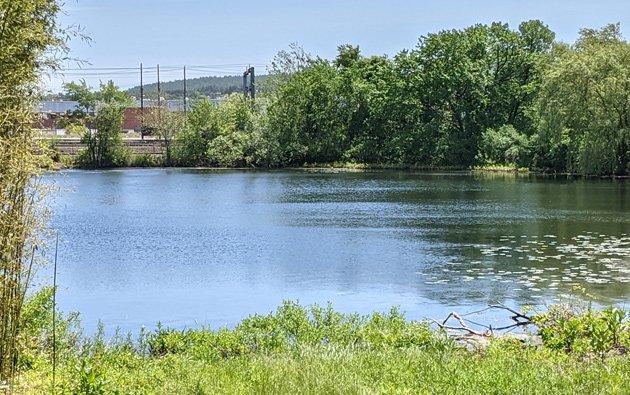 Sprague Pond