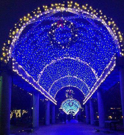 Blue lights on trellis at Christopher Columbus Park