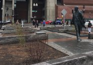 Shrubs and statue of Kevin White at Faneuil Hall